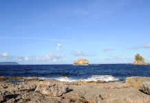 Blick vom Pointe des Chateaux auf das Meer, Guadeloupe - © Pack-Shot / Shutterstock