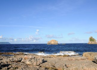 Blick vom Pointe des Chateaux auf das Meer, Guadeloupe - © Pack-Shot / Shutterstock