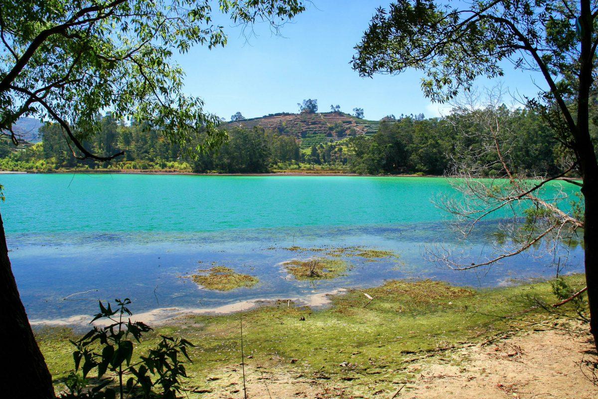 """Der See Telaga Warna (""""Farbiger See""""), der durch Schwefelablagerungen türkis leuchtet ist eine der Hauptattraktionen des Dieng Plateaus auf der Insel Java in Indonesien - © ezk / franks-travelbox"""