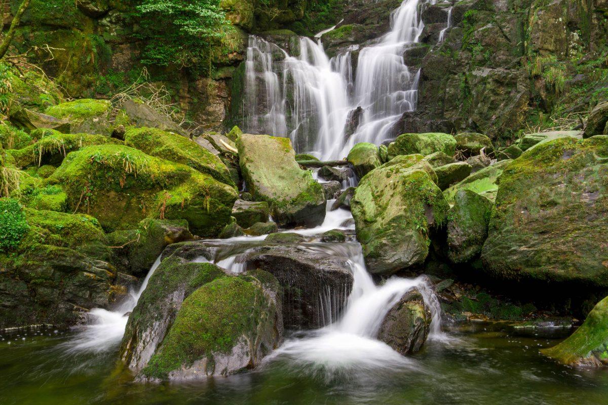 Vom Torc Wasserfall aus startet ein beliebter Wanderpfad auf die Spitze des Torc Mountain im Killarney Nationalpark, Irland  - © Patryk Kosmider / Shutterstock
