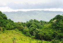 Berglandschaft in Jamaika - © Ramunas Bruzas / Shutterstock