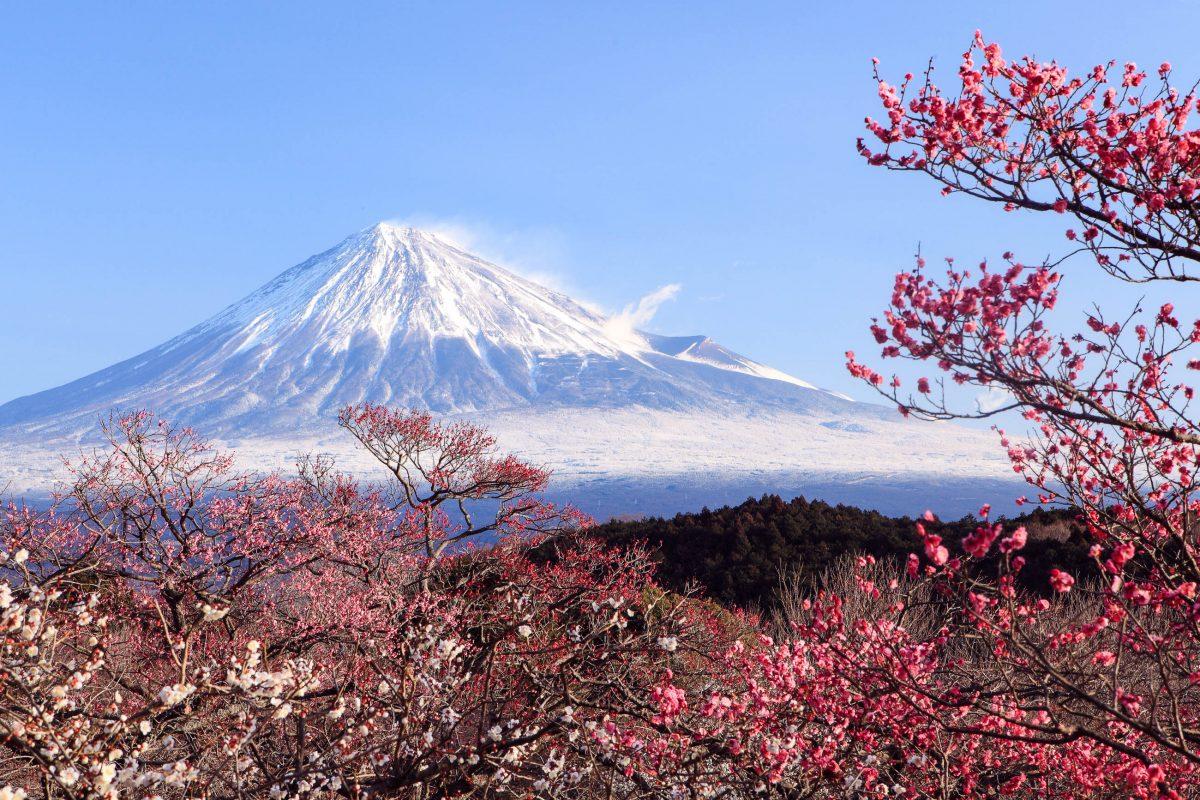 Bilder Mount Fuji Japan Franks Travelbox