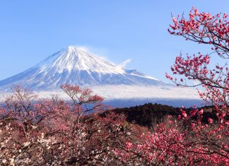 Der Berg Fuji im Frühjahr, Japan - © toraya / Fotolia