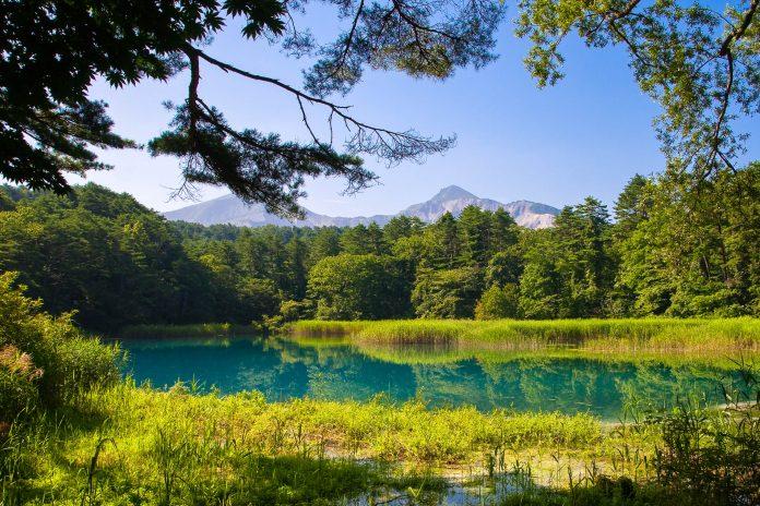 Die Gebirgswelt des Bandai-Asahi-Nationalparks in Japan beherbergt glasklare Seen und eine üppige Vegetation - © Luftikus / Shutterstock