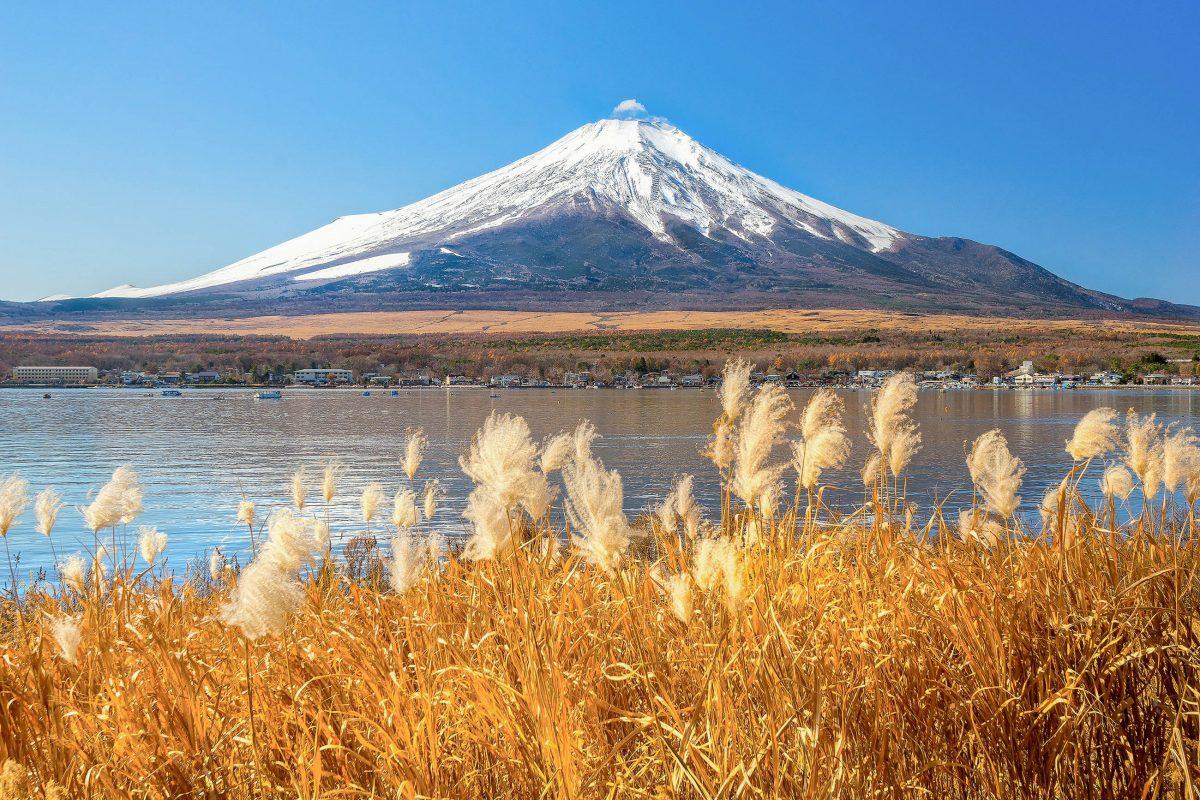 Morgenstimmung am See Yamanaka mit dem Mount Fuji im Hintergrund, Japan - © Luciano Mortula / Shutterstock