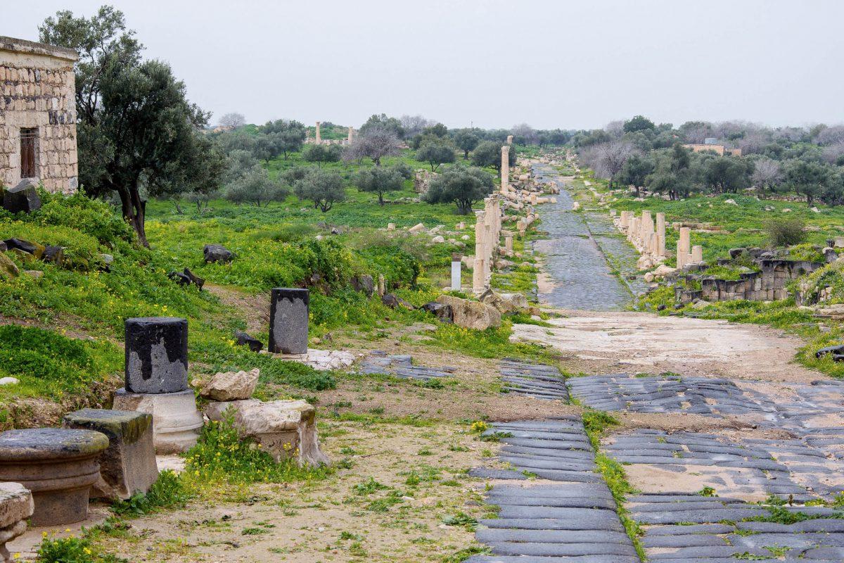 Die Hauptstraße von Gadara im Norden Jordaniens wurde einst von prachtvollen Kolonnaden gesäumt - © flog / franks-travelbox