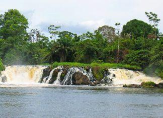 Die Lobé-Wasserfälle sind ca. 100 Meter breit und gehören zu den wenigen Wasserfällen der Welt, die ihr Wasser direkt ins Meer ergießen, Kamerun - © POZZODIBORGO Thomas/Shutterstock