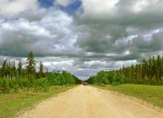 Wood Buffalo Nationalpark in den Northwest Territories, Alberta, Kanada - © Pecold / Shutterstock