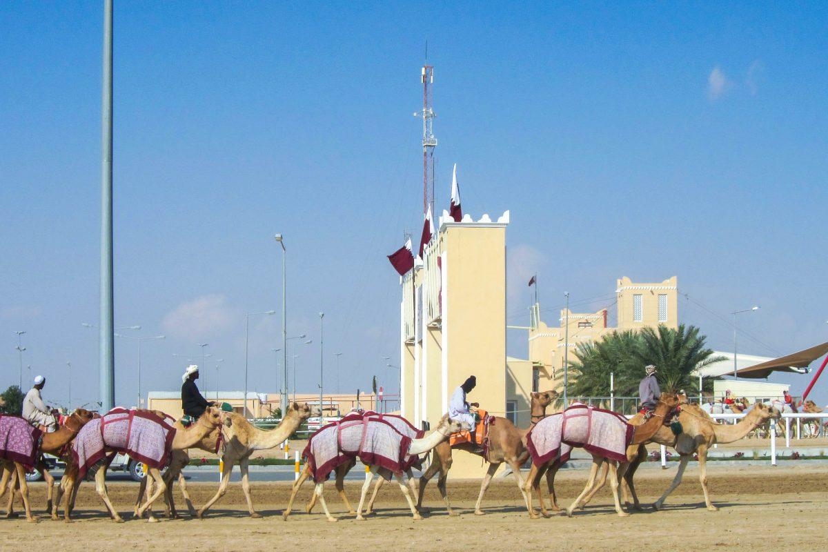 Die Atmosphäre an der Kamelrennbahn ist auch wenn gerade kein Rennen stattfindet erlebenswert, es ist immer etwas los, Qatar - © FRASHO / franks-travelbox