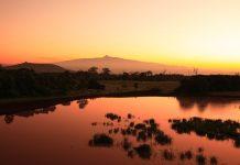 Sonnenuntergang im Mount Kenya Nationalpark, Kenia - © Deborah Benbrook / Shutterstock