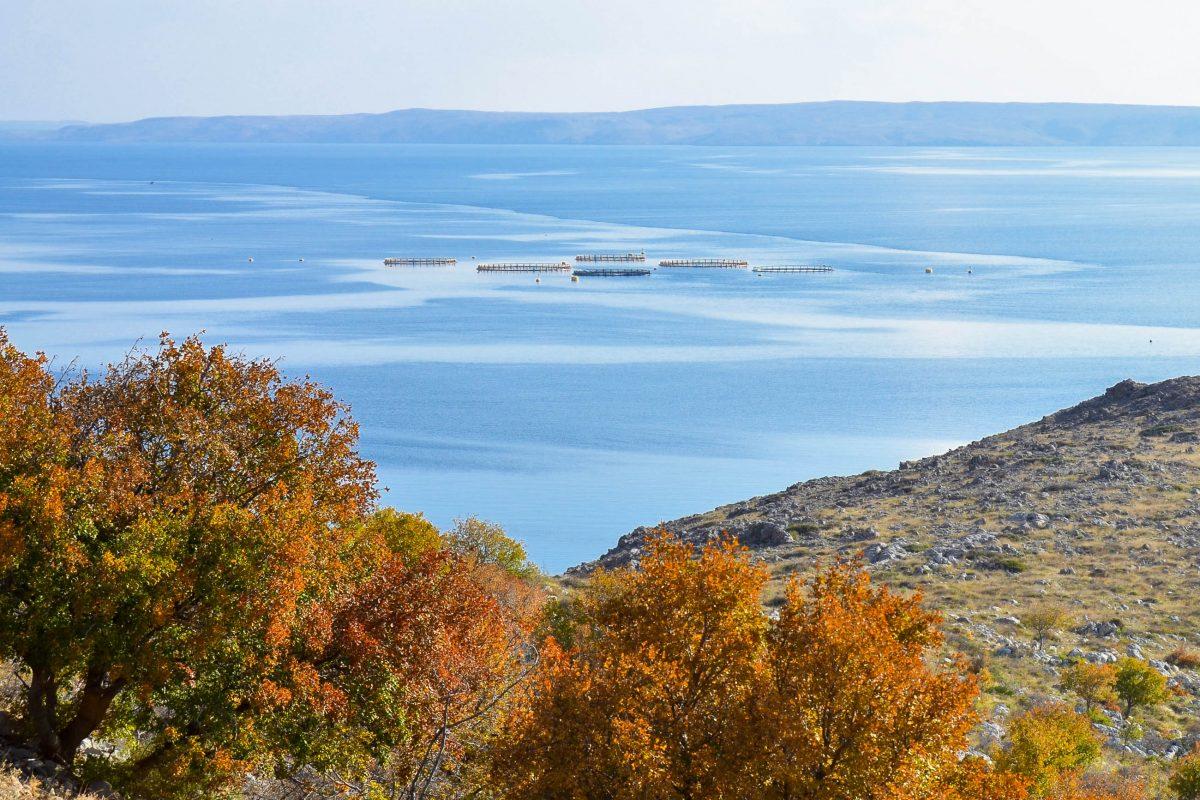 Blick von der Küstenstraße von Senj nach Maslinica auf das Meer, im Hintergrund die Insel Pag, Kroatien - © FRASHO / franks-travelbox