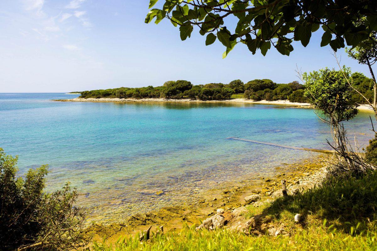 Der Nationalpark Brijuni vor der Halbinsel Istrien ist ein beliebtes Tagesausflugsziel für Kroatien-Urlauber im berühmten Städtchen Pula - © Henrique Daniel Araujo / Shutter