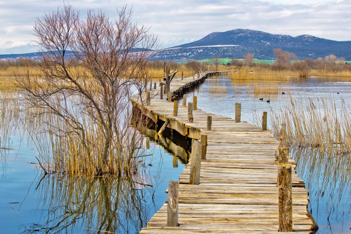 Der Vrana See vor der Küste Kroatiens in Mitteldalmatien bildet einen paradiesischen Lebensraum für allerlei Tierarten - © xbrchx / Shutterstock