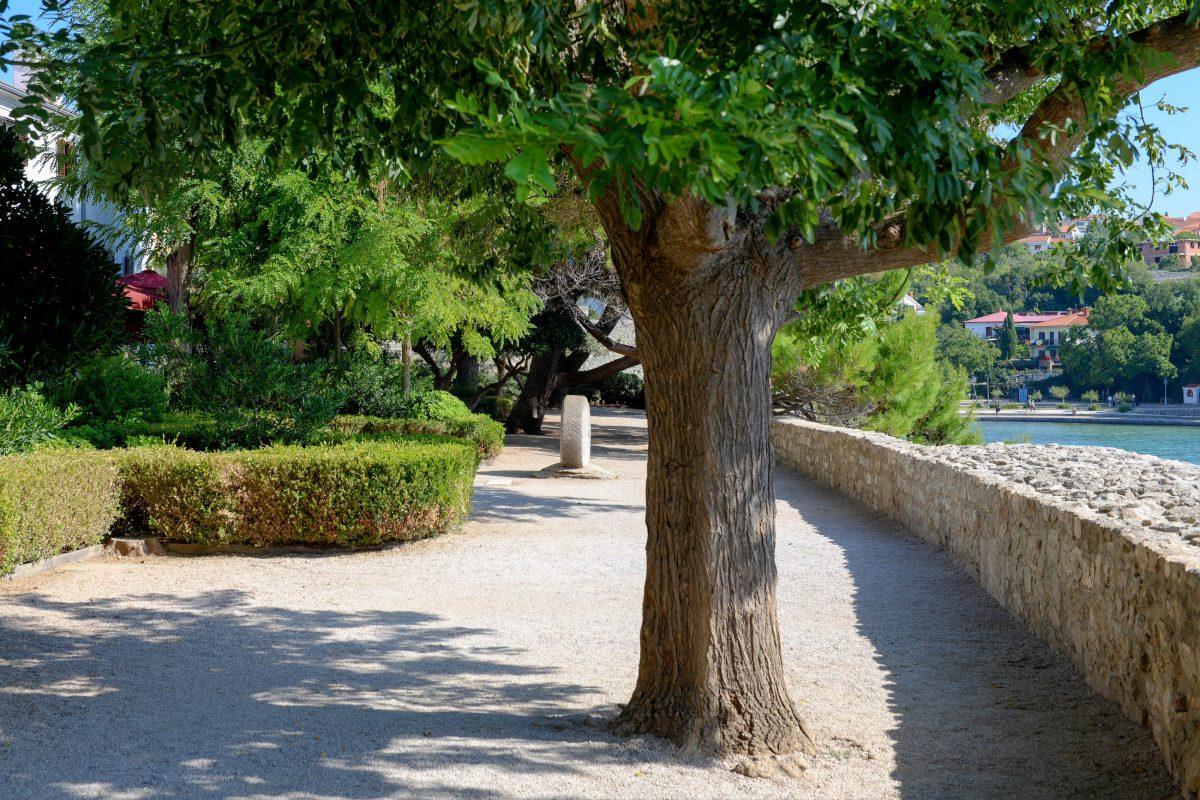 Nach dem Kastell von Krk Stadt führt der Weg im Schatten von duftenden Kiefern direkt auf der alten Stadtmauer entlang, Kroatien - © James Camel / franks-travelbox