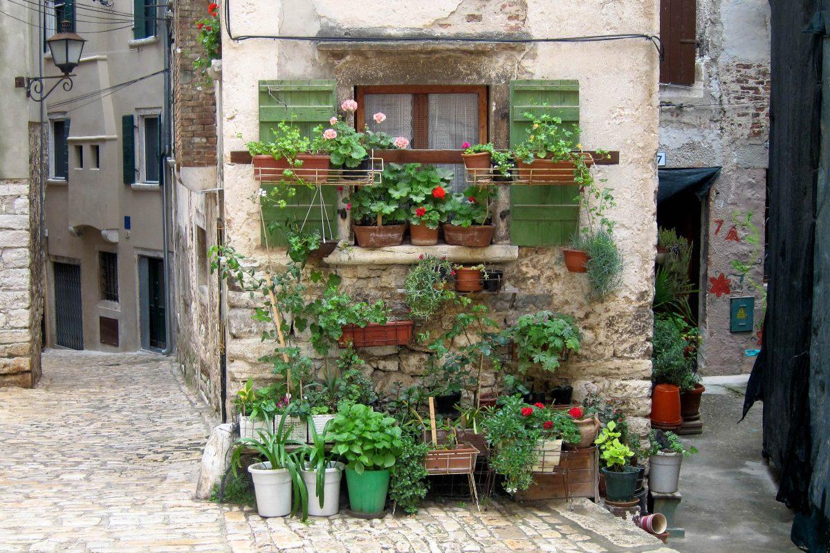 Besonders charmant sind die vielen verwinkelten Gassen und Hinterhöfe in Rovinj, die viele Küstenstädte Kroatiens so reizvoll machen - © FRASHO / franks-travelbox