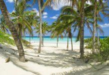 Die 6.000km lange Küstenlinie Kubas bietet mehrere hundert paradiesische Strände mit weißem Sand und ruhigem, türkisblauem Meer - © DUSAN ZIDAR / Shutterstock