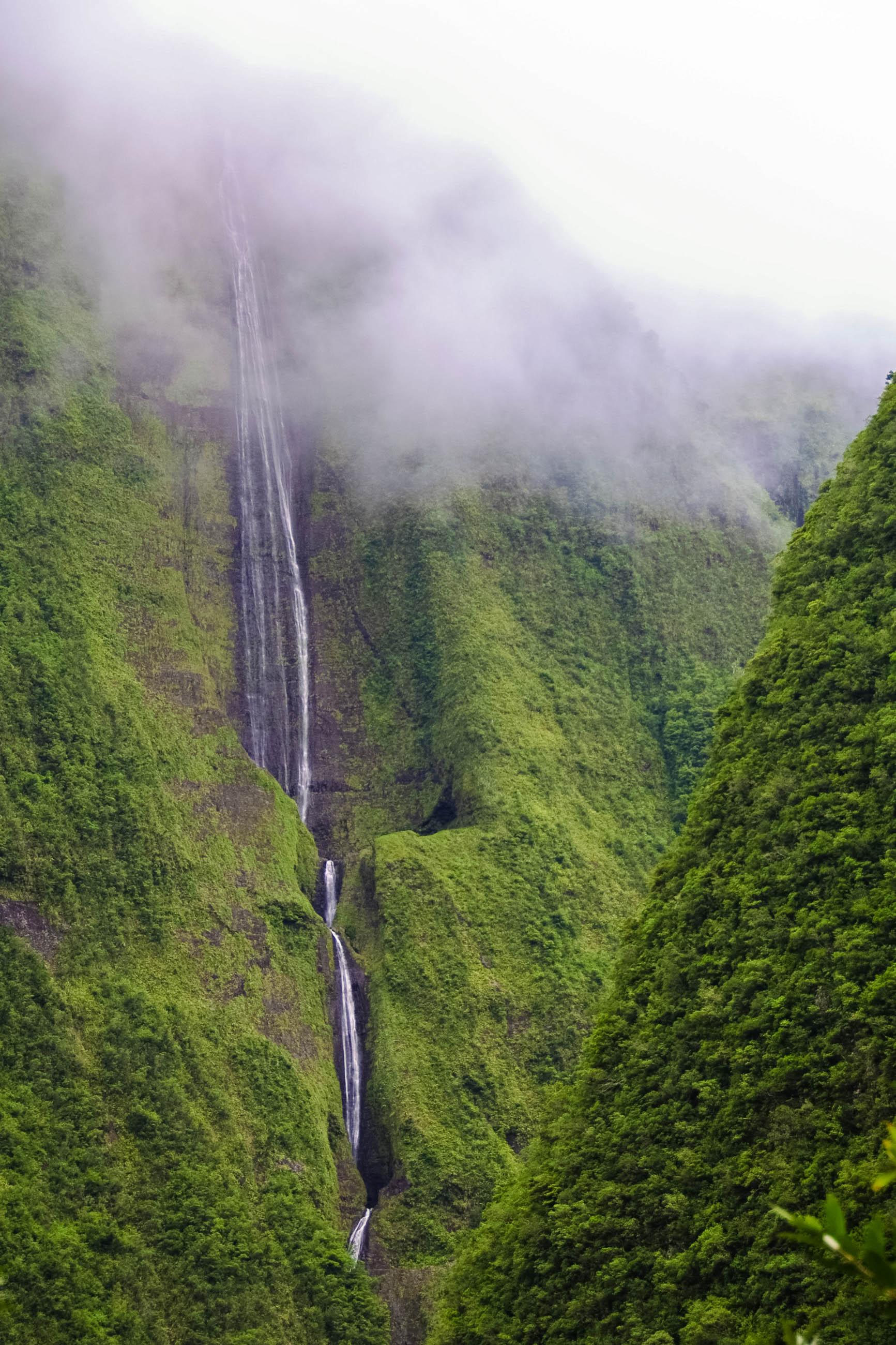 Wasserfall Trou de Fer im Forêt de Bébour, einem prachtvollen Urwald im Zentrum von La Réunion - © Sebastien Burel / Shutterstock