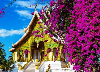 Im Tempel Ho Prabang am Gelände des Königspalastes in Luang Prabang ruht die vergoldete Buddha-Statue Phra Bang, die der Stadt einst ihren Namen gab, Laos - © GalynaAndrushko/Shutterstock