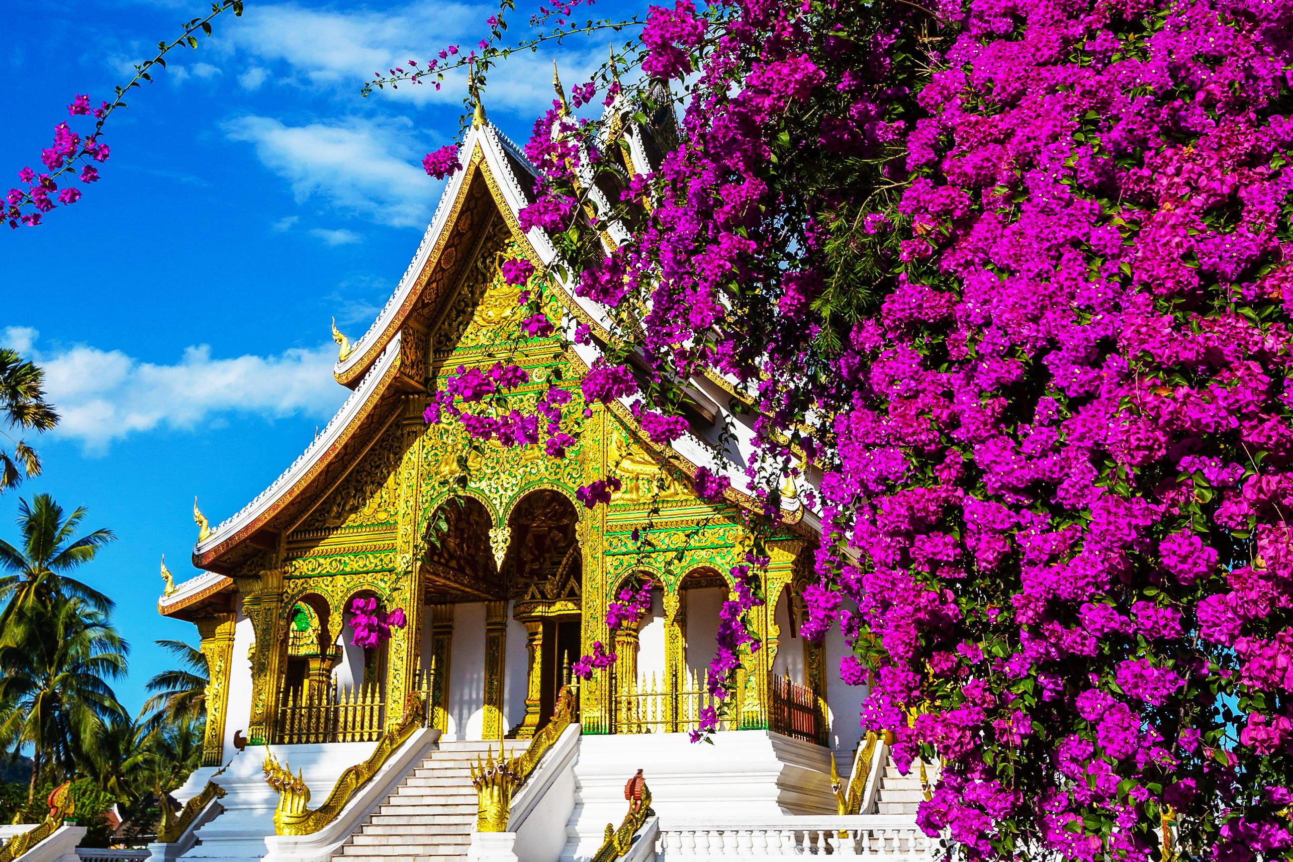 from Aidan gay laos luang prabang
