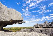 Der Nationalpark Tsingy de Bemaraha im Westen Madagaskars beherbergt nicht nur Tiere und Pflanzen, die es sonst nirgends auf der Welt gibt, sondern auch eine einzigartige Karstlandschaft - © Pierre-YvesBabelon/Shutterstock