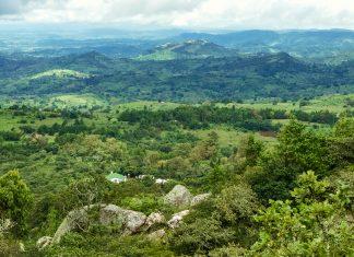 Der Berg Chongoni steht mit seinen typischen Miombo-Trockenwäldern unter Naturschutz und ist für seine bis zu 2.500 Jahre alten Felsmalereien an rund 130 Stätten bekannt, Malawi - © Duncan Payne / Shutterstock