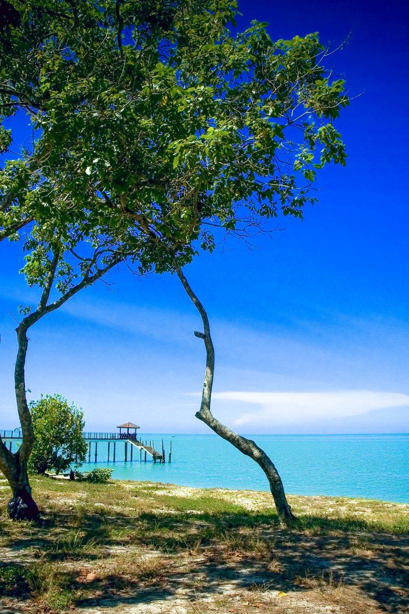 Der Strand Pentai Kerachut im Nationalpark auf der Insel Pulau-Penang wird von Schildkröten zur Eiablage benutzt, Malaysia - © Ng Yin Chern / Shutterstock