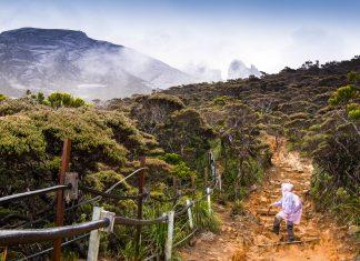 Ein Tourist auf dem Weg zum Mount Kinabulu, der mit einer Höhe von knapp 4.100 Metern einer der höchsten Berge Südostasiens ist, Malaysia - © Krajomfire / Shutterstock