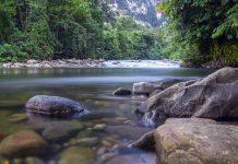 Fluß im Nationalpark Gunung Mulu in Malaysia - © Kim Briers / Shutterstock
