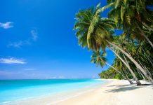 Die traumhafte Insel Alimatha im Felidhu-Atoll auf den Malediven bietet alles, was das Urlauberherz begehrt - © photogerson / Shutterstock