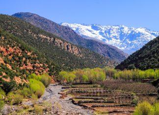 Die schönste Jahreszeit für einen Besuch des Toubkal Nationalparks ist der wetterstabile Herbst oder der Frühling, wenn die Gebirgsregionen in ein Blütenkleid gehüllt sind, Marokko - © John Copland / Shutterstock
