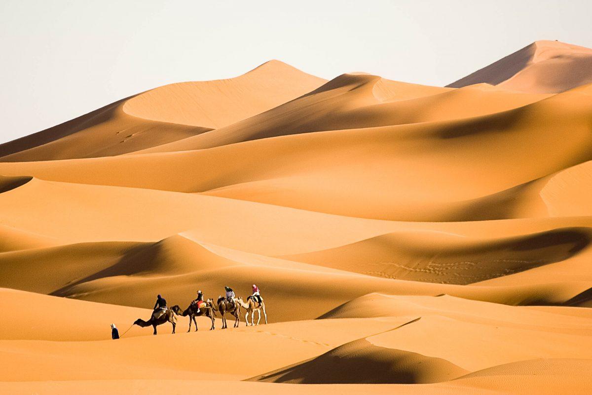 Kamel Trekking in fantastischen Sanddünen der Sahara von Marokko - © ricardomiguel.pt / Shutterstock