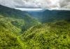 Panorama im Black River Gorges Nationalpark im Südwesten von Mauritius, der fantastische Wanderwege und einen der seltensten Regenwälder der Welt bietet - © bengy / Shutterstock