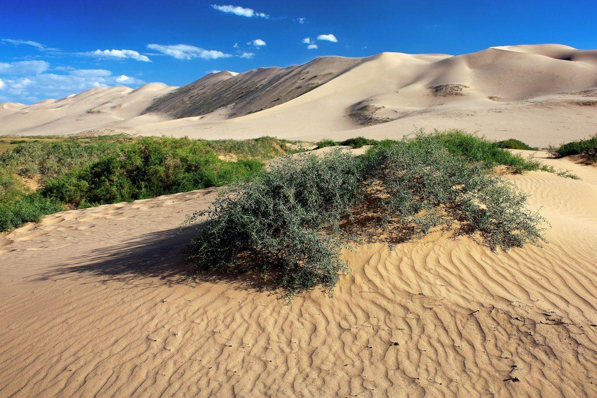 Auf der Seidenstraße wurde bereits in der Bronzezeit mitten in der Wüste Gobi Handel getrieben - © Daniel Prudek / Shutterstock