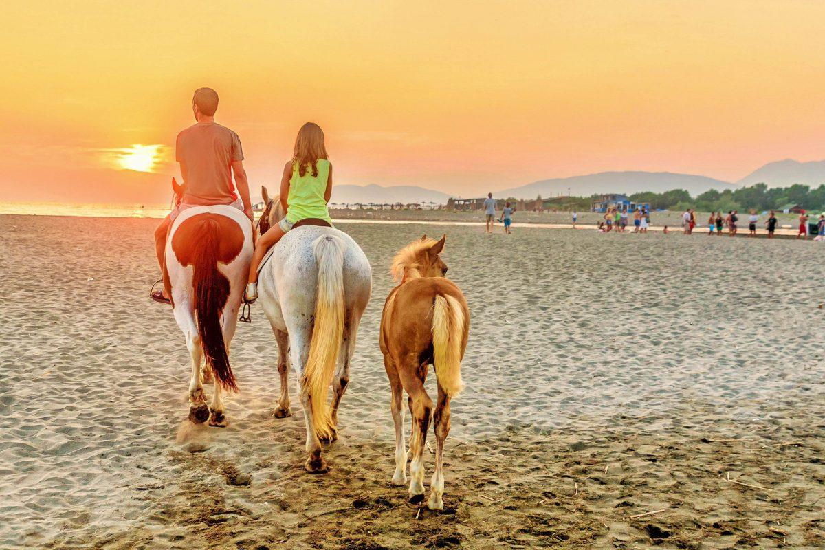 Am Strand in den Sonnenuntergang zu reiten ist auf der Insel Ada Bojana im Süden von Montenegro möglich - © Darko Vrcan / Shutterstock