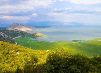 Der Skadar-See wird durch eine Vielzahl von unterirdischen Zuflüssen aus dem umliegenden Bergland gespeist; diese kühlen Quellen verhindern, dass der See im Sommer zu warm wird und kippt, Montenegro - © FRASHO / franks-travelbox