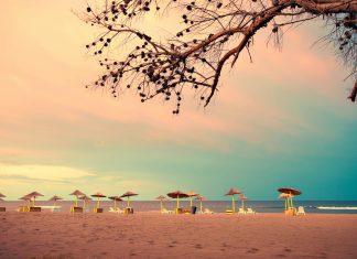 Die Insel Ada Bojana im Süden von Montenegro lockt Besucher mit Sandstrand und ausgezeichneten Surfbedingungen - © coka / Shutterstock