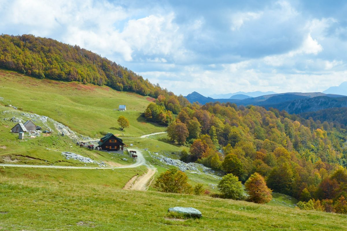 Eine der wenigen Hütten im Nationalpark Biogradska Gora; wer Lust hat kann einen Ausritt unternehmen, Montenegro - © FRASHO / franks-travelbox