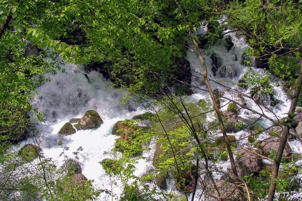Der Gebirgsfluss Mrtvica hat sich auf einer Länge von 14km in die gleichnamige Schlucht gegraben, der Wände bis zu 1.000m in die Höhe streben, Montenegro - © Darko Sarcevic / Shutterstock
