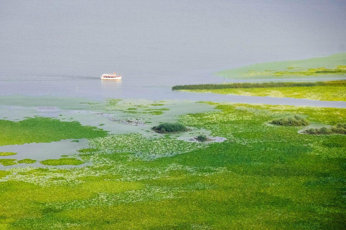 Unter der wärmenden Sonne Montenegros ist auf dem tiefblauen Skadar-See selten ein Boot oder Wassersportler zu sehen - © FRASHO / franks-travelbox