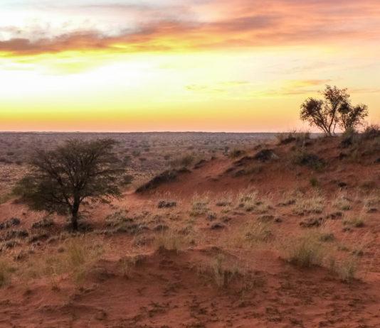 Blick in die Kalahari Sandwüste im Süden Namibias, kurz vor Sonnenaufgang - © FRASHO / franks-travelbox