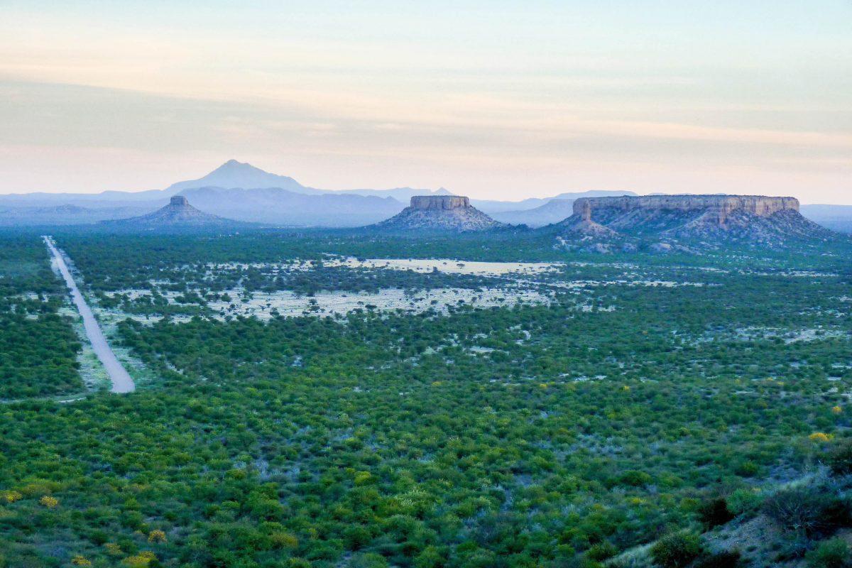 Die höchsten der Plateau-Berge im Ugab-Tal ragen 160 Meter hoch in den Himmel, Namibia - © FRASHO / franks-travelbox
