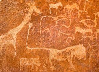 """Eine der bekanntesten Felszeichnungen in Twyfelfontein, die """"Löwenplatte"""", auf der ein Löwe mit mächtigen Pranken und abgeknicktem Schwanz zu sehen ist, Namibia - © FRASHO / franks-travelbox"""
