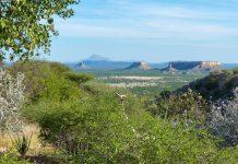 Neben den blockförmigen Plateau-Bergen ist im prähistorischen Ugab-Tal im Norden von Namibia auch die berühmte Fingerklippe zu finden - © FRASHO / franks-travelbox