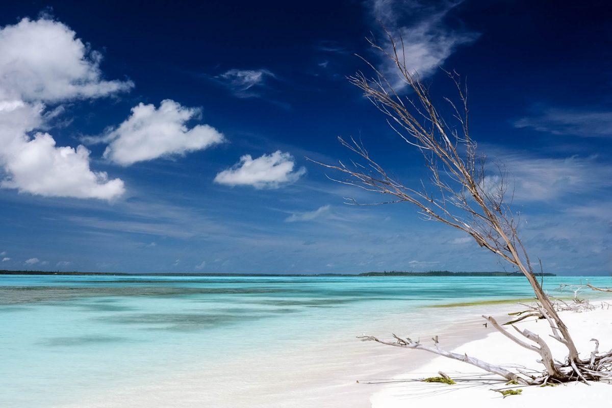 Der Phosphat-Abbau hat die paradiesische Insel Nauru beihnahe ruiniert - © VEKHA / Shutterstock