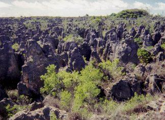 Der Phosphatabbau auf der Südsee-Insel Nauru hat große Teile des paradiesischen Eilandes in eine karge Mondlandschaft verwandelt - © ARM program - PD/Wiki