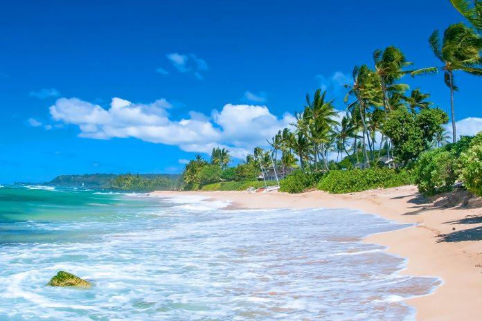 Die Anibare Bucht ist der längste Strand auf der Südsee-Insel Nauru und nimmt so gut wie die gesamte östliche Küstenlinie ein - © Vacclav / Shutterstock