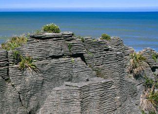 An abgebrochenen Stellen der Pancake Rocks kann man die aufgeschichteten Lagen gut erkennen – sie sehen tatsächlich aus wie Pfannkuchen, die übereinander gestapelt wurden, Neuseeland - © ezk / franks-travelbox