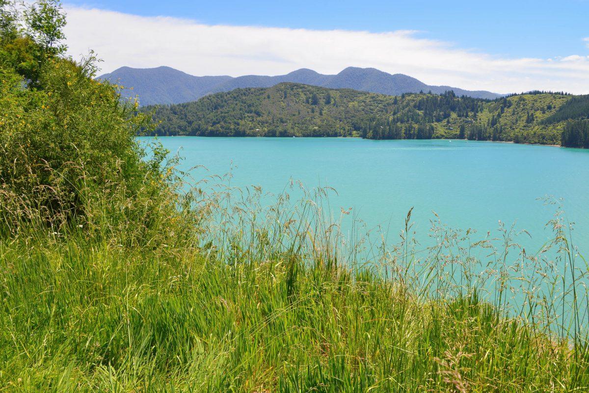 Auf den insgesamt 1.400 Kilometern Küstenlinie der Marlborough Sounds sind hin und wieder Häuser auszumachen, Neuseeland - © FRASHO / franks-travelbox