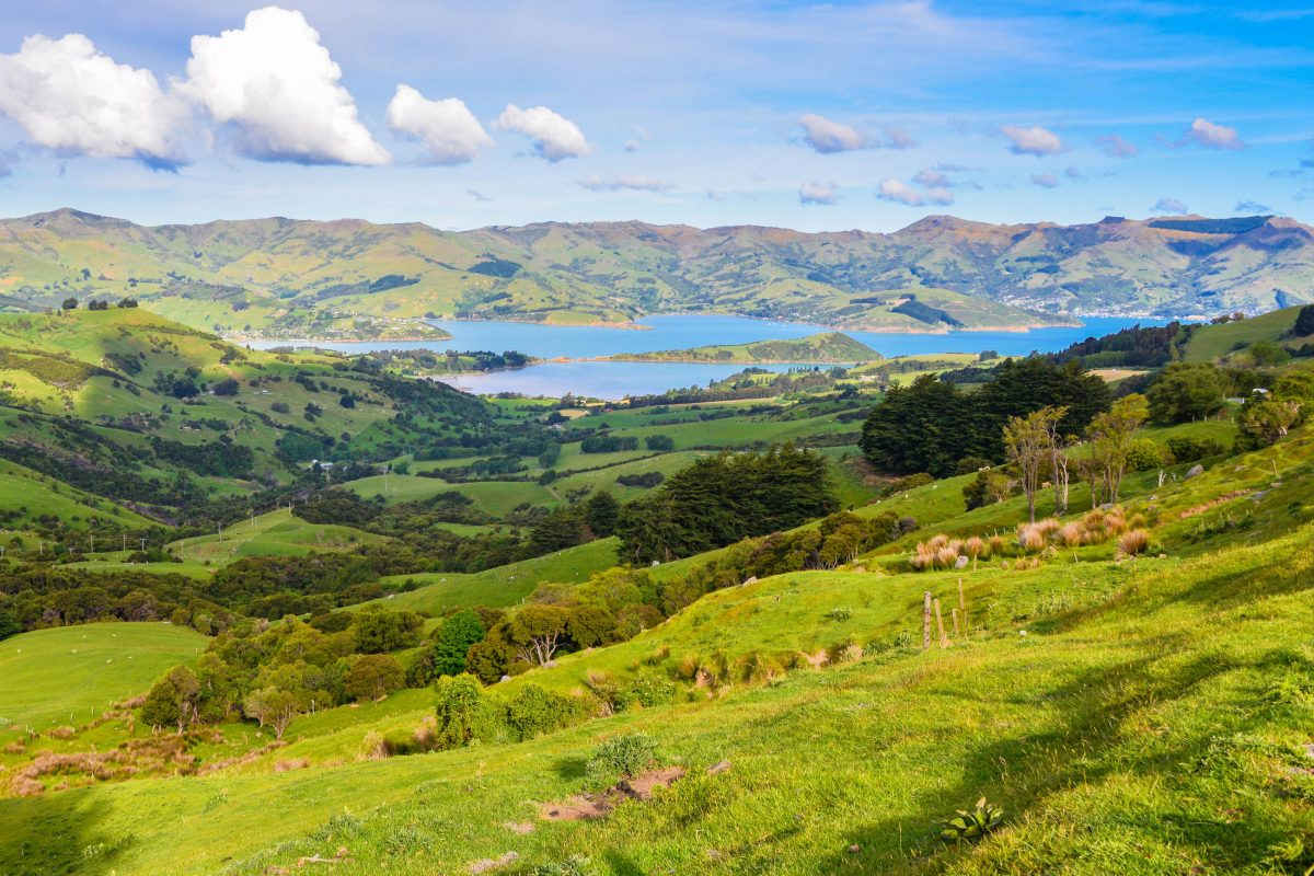 Der Banks Peninsula Track startet und endet in Akaroa und hält atemberaubende Panoramablicke bereit, Neuseeland - © FRASHO / franks-travelbox