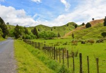 Der Forgotten World Highway zwischen Stratford und Taumarunui lockt mit unberührter Natur und fantastischen Ausblicken auf saftig grüne Hügel, Neuseeland - © FRASHO / franks-travelbox